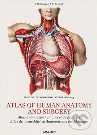 Atlas of Human Anatomy and Surgery - Jean-Marie Le Minor, Henri Sick