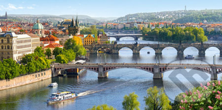 Vltava Bridges in Prague -