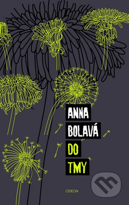 Do tmy - Anna Bolavá
