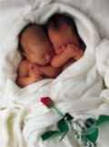 Milly & Natalie - Anne Geddes