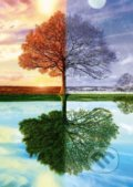 The seasons tree -