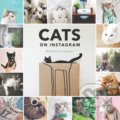 Cats on Instagram -
