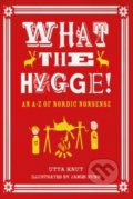 What the Hygge! : An A-Z of Nordic Nonsense -