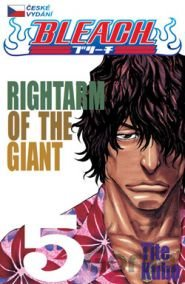 Kniha Bleach 5: Right Arm of the Giant (Tite Kubo) - Tite Kubo