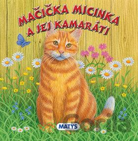 len mačička Foto