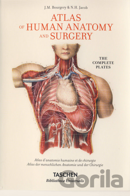 Kniha Atlas of Human Anatomy and Surgery - J.M. Bourgery, N.H. Jacob
