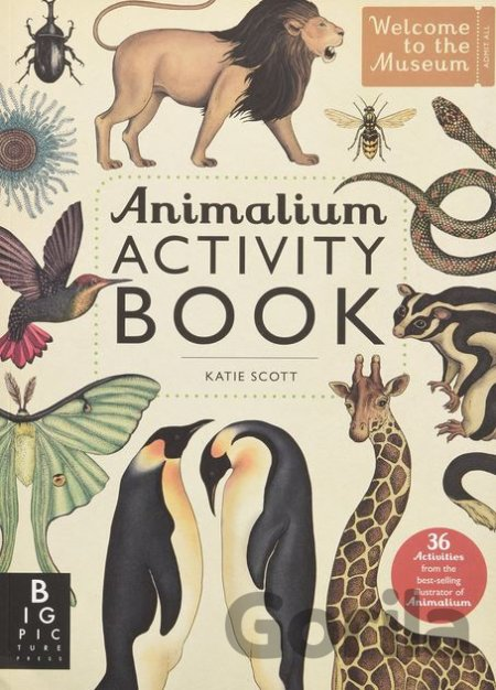 Kniha Animalium Activity Book (Katie Scott) (Paperback) - Katie Scott