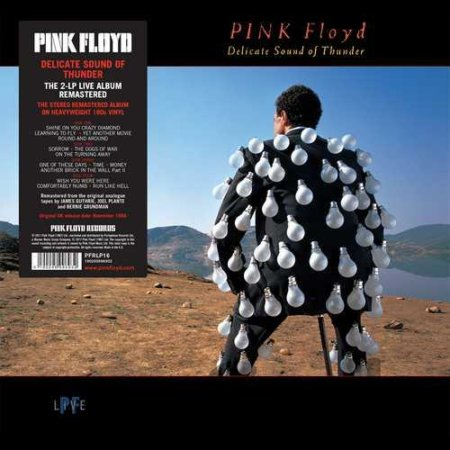 Pink Floyd: Delicate Sound Of Thunder  [LP]