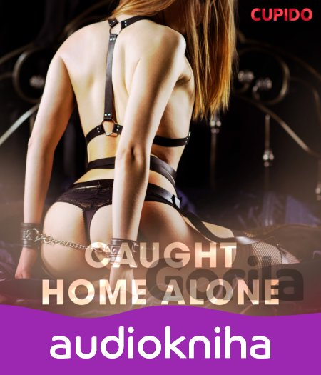 Audiokniha Caught home alone (EN) - Cupido And Others