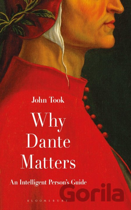 Kniha Why Dante Matters - John Took