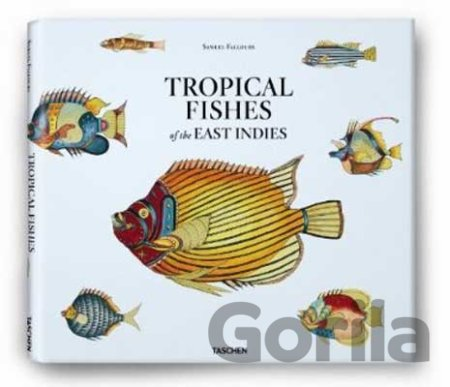 Kniha Samuel Fallours: Tropical Fishes of the East Indies - Theodore W. Pietsch