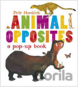 Animal Opposites (Petr Horacek ) (Hardcover)