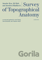 Survey of Topographical Anatomy