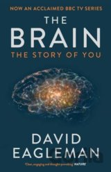 The Brain: The Story of You (David Eagleman) (Paperback)