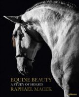 Equine Beauty - Small Edition (Raphael Macek) (Hardcover)