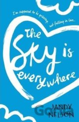 The Sky Is Everywhere (Jandy Nelson) (Paperback)