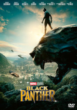 Black Panther (DVD)