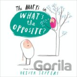What's the Opposite? (The Hueys) (Oliver Jeffers) (Paperback)