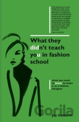 What They Didnt Teach You in Fashion School (Jay Calderin)