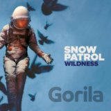 Snow Patrol: Wildness Deluxe LP