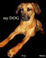 My Dog (Thomas Niederste-Werbeck) (Hardback)