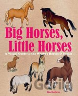 Big Horses, Little Horses