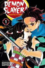 Demon Slayer: Kimetsu no Yaiba (Volume 1)