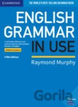 English Grammar in Use - Book without Answers