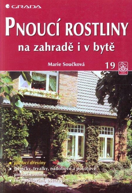 Fatimma.cz Pnoucí rostliny na zahradě i v bytě Image