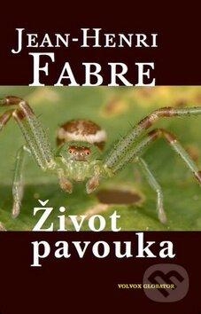 Fatimma.cz Život pavouka Image