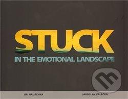 Peticenemocnicesusice.cz Stuck in the emotional landscape Image
