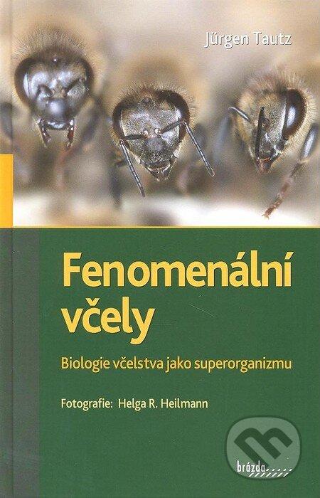 Venirsincontro.it Fenomenální včely Image