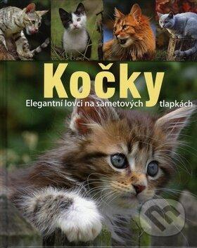 Interdrought2020.com Kočky Image