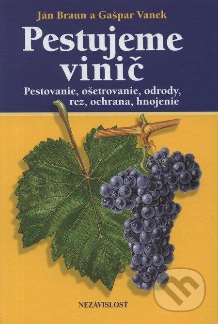 Venirsincontro.it Pestujeme vinič Image