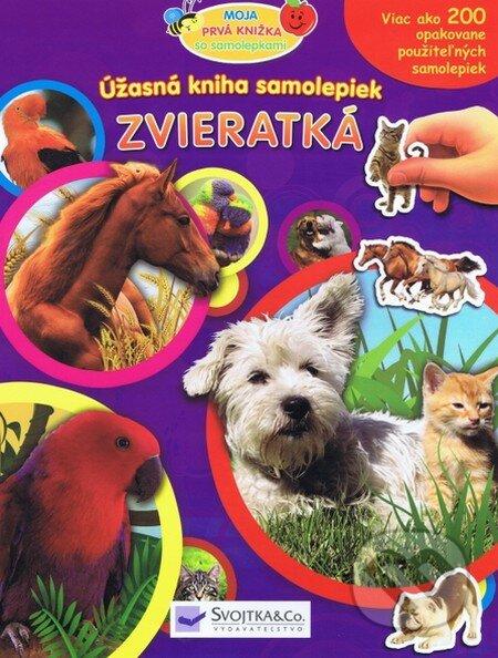 Venirsincontro.it Zvieratká Image