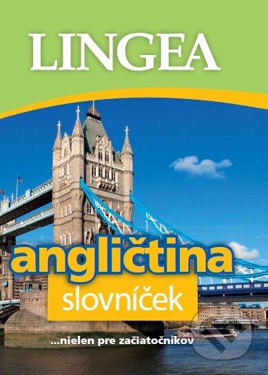 Peticenemocnicesusice.cz Angličtina slovníček Image