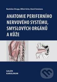 Bthestar.it Anatomie periferního nervového systému, smyslových orgánů a kůže Image