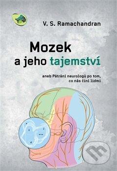 Removu.cz Mozek a jeho tajemství Image