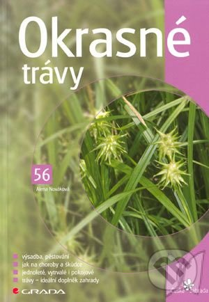 Peticenemocnicesusice.cz Okrasné trávy Image