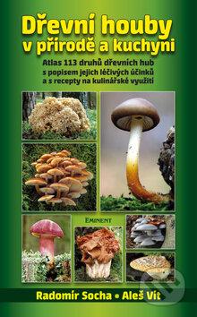 Bthestar.it Dřevní houby v přírodě a kuchyni Image
