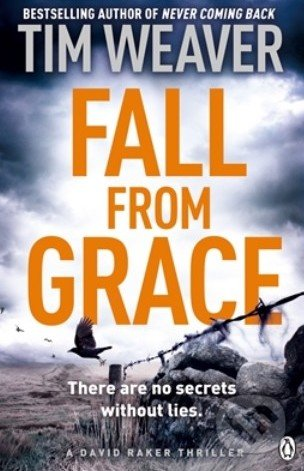 Fall From Grace - Tim Weaver