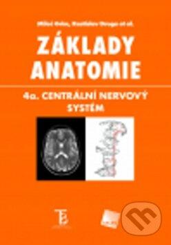 Fatimma.cz Základy anatomie Image