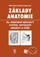 Excelsiorportofino.it Základy anatomie Image