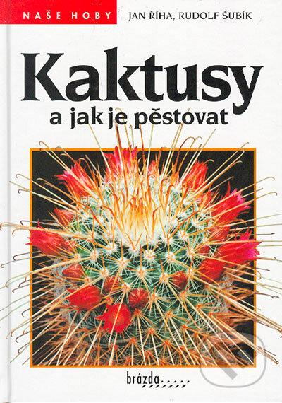 Fatimma.cz Kaktusy a jak je pěstovat Image