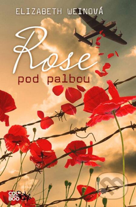 Venirsincontro.it Rose pod palbou Image