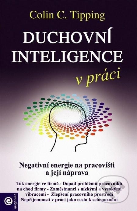 Fatimma.cz Duchovní inteligence v práci Image