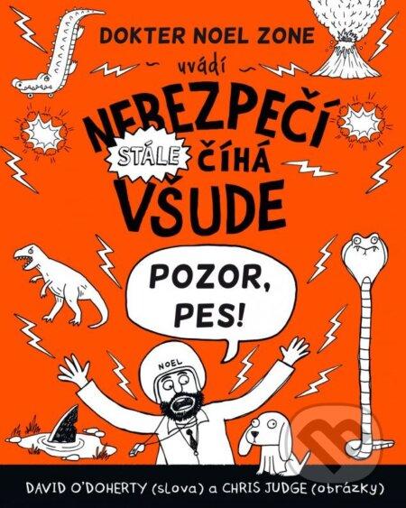 Peticenemocnicesusice.cz Nebezpečí stále číhá všude Image