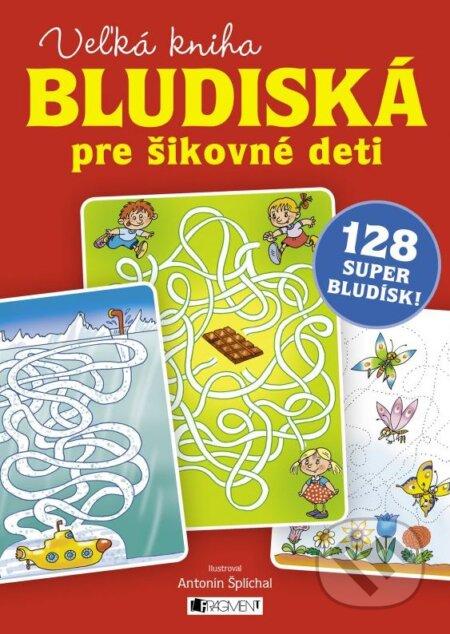Bthestar.it Veľká kniha – bludiská pre šikovné deti Image