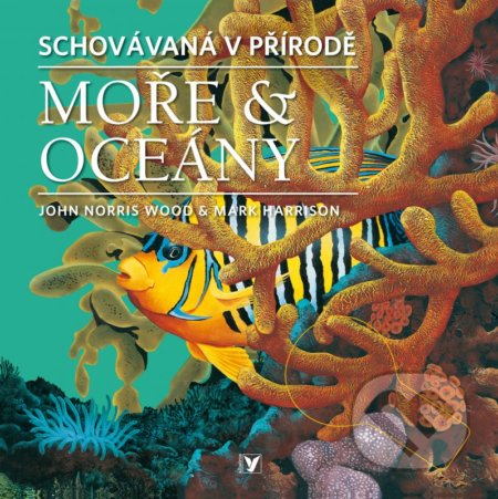 Newdawn.it Moře & oceány Image
