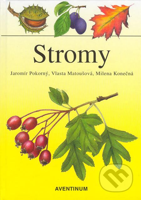 Interdrought2020.com Stromy Image